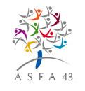 ASEA 43